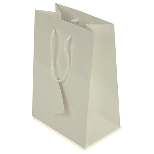 BOLSA REGALO - PAPEL PLASTIFICADO